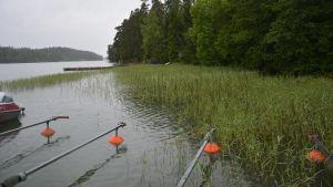 Bergvalla i Ingå.