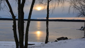 Vintersol vid strandkanten.