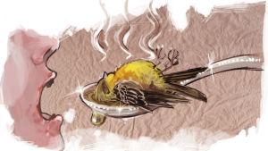 Keltasirkkua käytettiin kansanperinteessä lääkkeellä