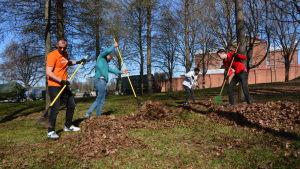 Asyslsökande från Vasa mottagningscentral visar sin tacksamhet genom att hjälpa till med städningen av stadens grönområden.