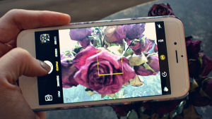 mobilfoto