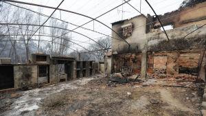 Hus förstört i branden den 17.06.2107