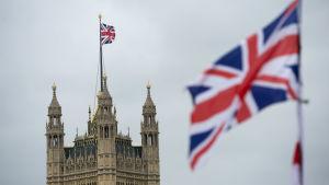 Storbritanniens flagga och parlamentsbygganden i London.