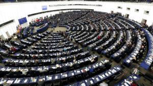Eu-parlamentti istunto Strasbourgissa, laaja kuva
