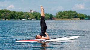 Kvinna på surfbräde som yogar i vattnet.