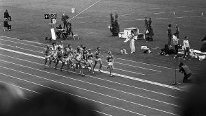 Helsingin yleisurheilun EM-kisat 10.-15.8.1971. EM-kilpailut 1971, Helsinki. Olympiastadion. Miesten 5000m:n juoksun finaali. Juoksijat radalla. Juoksukilpailu.