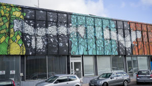 Otto Majan maalama ja Multicoloured Dreamsin järjestämä purkutalohanke