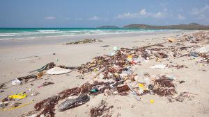 Plastavfall och annat skräp på en sandstrand