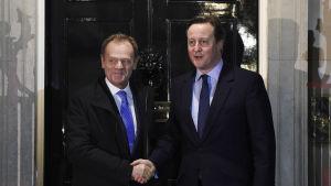Cameron och Tusk förhandlade om brittiska villkor