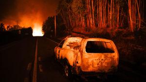 Skogsbrand i Leiriadistriktet i Portugal. En brunnen bil i förgrunden.