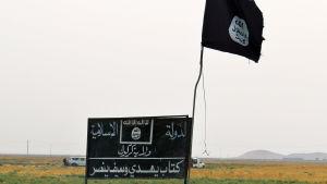 Terrororganisationen IS flagga och skylt söder om Kirkuk i Irak den 11 september 2015.