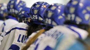 Damlandslaget i ishockey