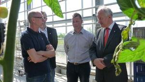Martin Sigg, Juan Deelen, Robert Westdijk tillsammans med ambassadör Henk Swarttouw.