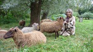 Jill Christiansen med några av sina får i Stentorp.