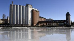 Silorna i dagsljus en vårvinterdag. Bilden är tagen på isen utanför silorna.