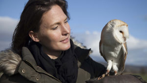 BBC:n kolmeosaisessa dokumenttisarjassa tutustutaaan eläinmaailman superaisteihin.