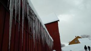 Långa istappar hänger från tak på trähusvägg, en gul stuga i bakgrunden, två mänskofigurer fotade på avstånd