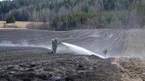 Brandmän släcker gräsbrand på åker
