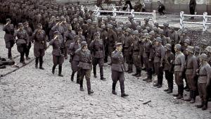 Viipurin valtausparaati 31.8.1941.