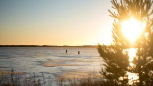 Pilkfiskare på isen.