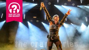 Dolores O'Riordan från The Cranberries med uppsträckta armar på en konsertscen.
