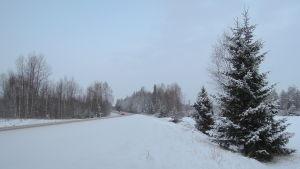 En landsvägskurva, mycket snö vid vägrenen. Två bilar närmar sig tittaren.