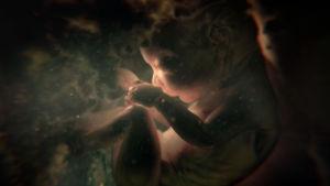 Miten ihminen kehittyy äitinsä kohdussa hedelmöityksestä syntymään?