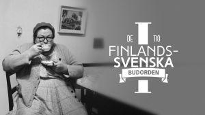 De tio finlandssvenska budorden 1