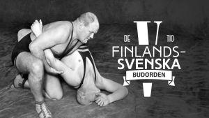 De tio finlandssvenska budorden 5