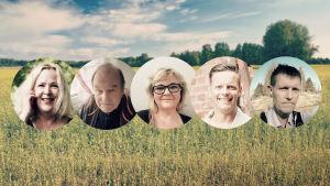 Fem kandidater för lyssnarnas sommarpratare 2018