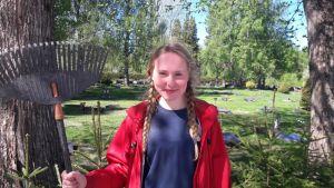 Elsa österåker sommarjobbar vid Korsholms begravningsplats