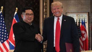 Nordkoreas ledare Kim Jong-un och USA:s president Donald Trump skakar hand efter att de undertecknat deklarationen i Singapore.