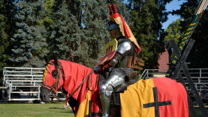 En riddare i full utrustning sitter till häst. Hästen och skölden är rödgula med ett svart kort.