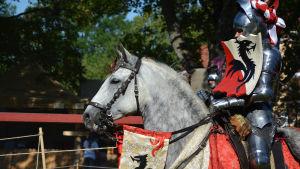 En riddare i rustning till häst. Hennes rödvita sköld pryds av en drake.
