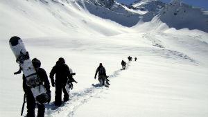 Offpist-lumilautailijoita vuoren rinteellä