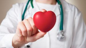 Läkare håller i ett rött plasthjärta