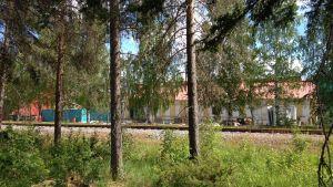 Wasalandia sett från Blå vägen.