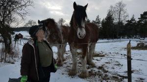 kvinna invid hästar i hage