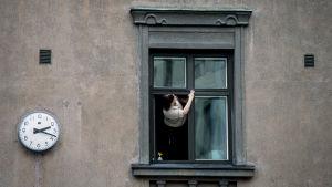 Kvinna tvättar fönster