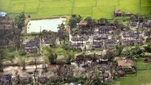 Den burmesiska armén anklagar militanta rohingyer för att ha massakrerat 45 hinduer och för att ha bränt deras by i Rakhine