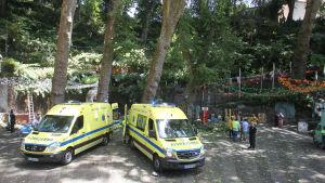 Åtminstone två ambulanser kallades till platsen då ett träd föll under en religiös högtid på Madeira.