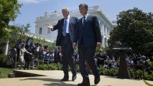 Sydkoreas nyvalde president Moon Jae-In besökte president Donald Trump i Vita huset kort efter sitt tillträde i juni.