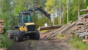 En skogsmaskin kör ut virke