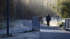 Pappersbron i Vasa, frost i gräset, folk promenerar och cyklar i förmiddagssolen