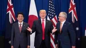 Den japanske premiärminister Shinzo Abe, USA:s president Donald Trump och Australiens premiärminister Malcolm Turnbull möts under öppnandet av Asean-toppmötet i Manila den 13 november.