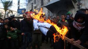 Palestinska protester mot Trump