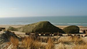 Miljökonstverket Sandworm (sandmask) uppfördes i Belgien.