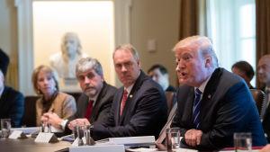USA:s president Donald Trump vid ett kabinettmöte i Vita huset