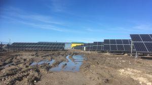 Solpaneler på ett lerigt fält på Dagö, Estland