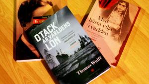 Thomas Wulffs historiska romantrilogi avslutas med Otack är världens lön